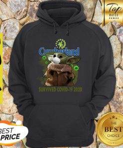 Nice Baby Yoda Cumberland Farms Survived Covid-19 2020 Hoodie