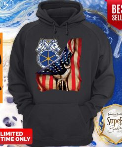 International Brotherhood Of Teamsters America Flag Hoodie