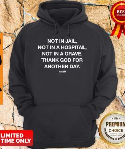 Nice Not In Jail Not In A Hospital Not In A Grave Hoodie