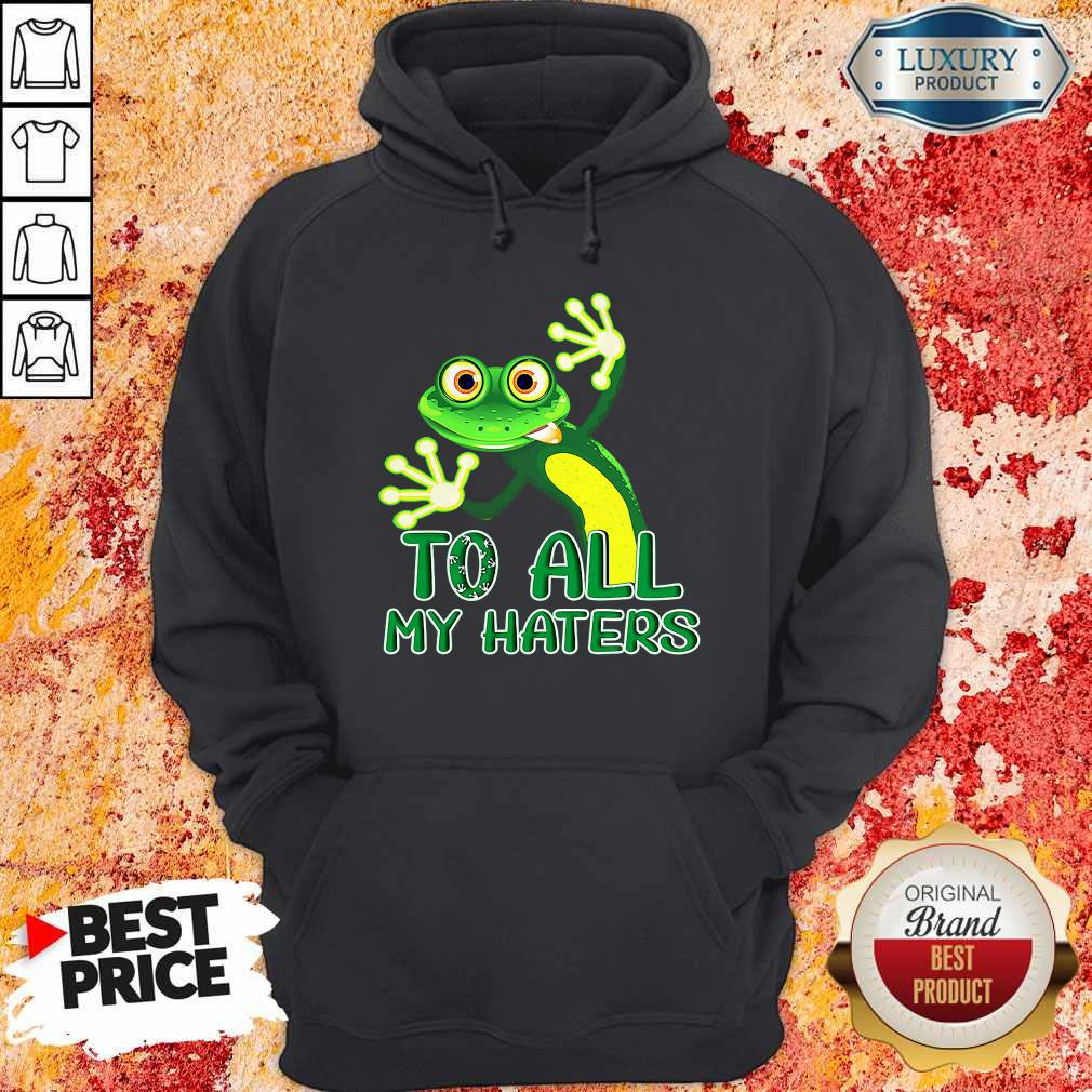 Premium To All My Haters Hoodie