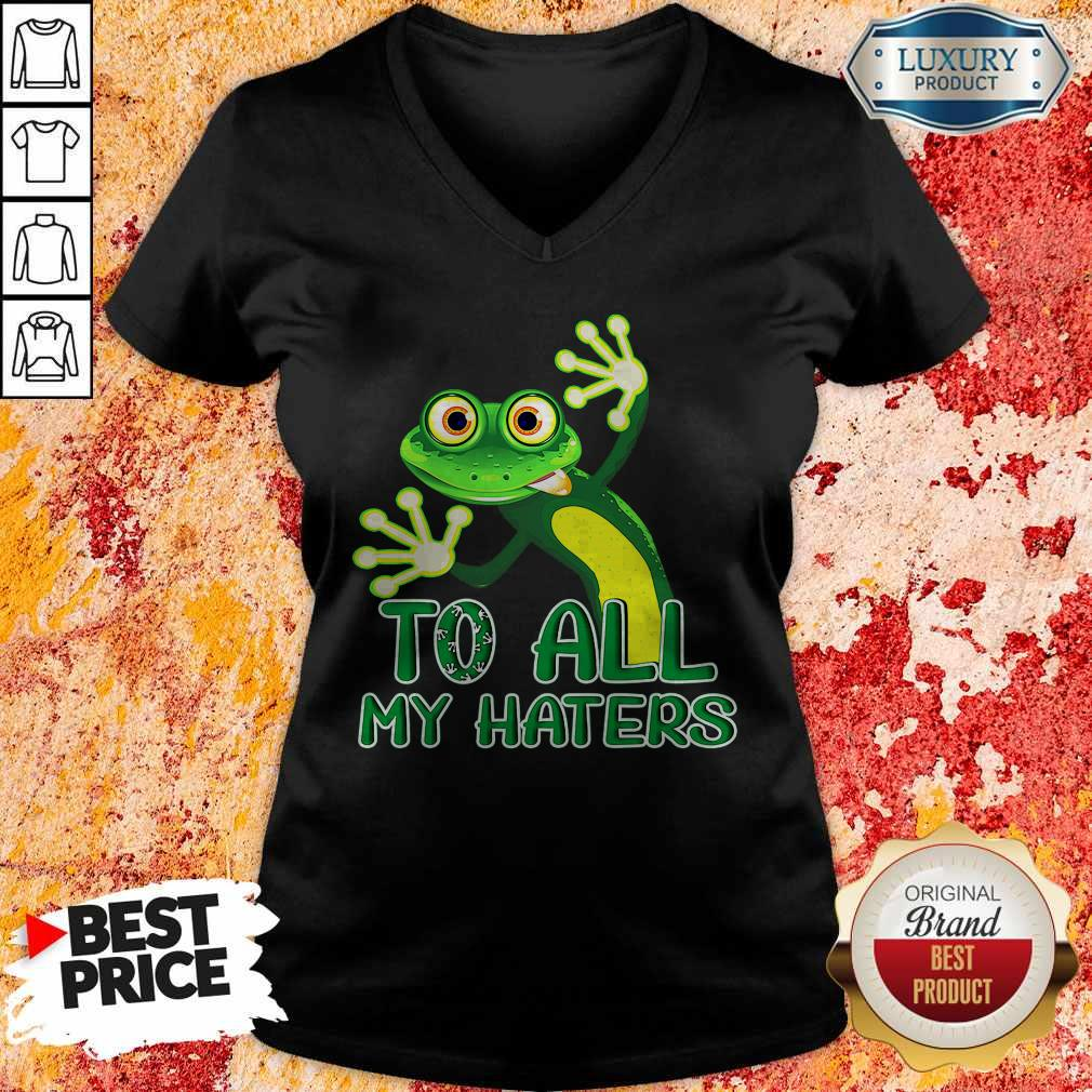 Premium To All My Haters V-neck