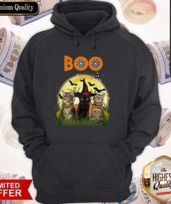 Funny Cats Boo Halloween Black Cat With Hoodie