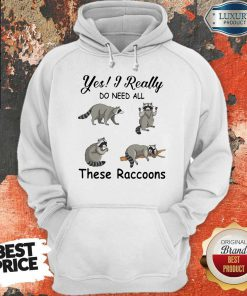 Hot Yes I Really Do Need All These Raccoons Hoodie