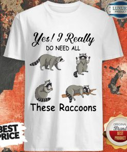Hot Yes I Really Do Need All These Raccoons Shirt