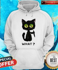 Perfect Black Cat What Murderous Cat With Knife Hoodie