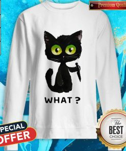 Perfect Black Cat What Murderous Cat With Knife Sweatshirt
