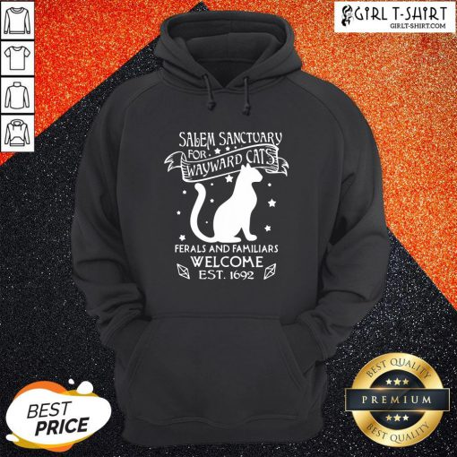 Hi Nice Cat Salem Sanctuary For Wayward Cats Ferals And Familiars Welcome Est 1692 Hoodie - Design By Girltshirt.com