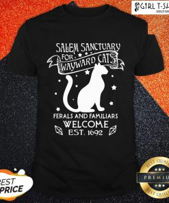 Hi Nice Cat Salem Sanctuary For Wayward Cats Ferals And Familiars Welcome Est 1692 Shirt - Design By Girltshirt.com