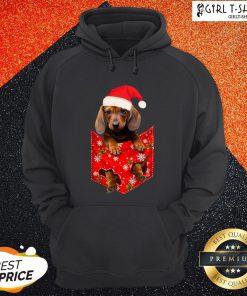 Premium Santa Daschund Merry Christmas Hoodie - Design By Girltshirt.com