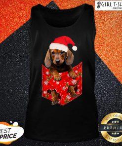 Premium Santa Daschund Merry Christmas V-neck - Design By Girltshirt.com