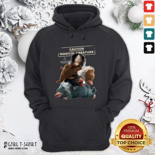 Cool Fantastic Beasts 2 Cuddle Puddle Hoodie- Design By Girltshirt.com