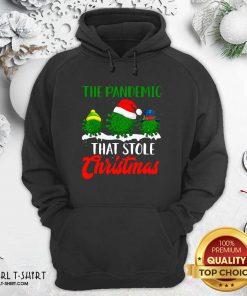 The Pandemic That Stole Christmas 2020 Virus Corona Hoodie- Design By Girltshirt.com