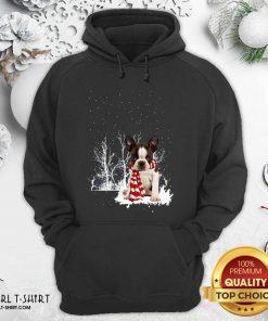 Boston Terrier Snow Scarf Christmas Hoodie - Design By Girltshirt.com