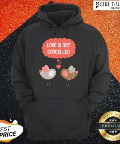 Love Is Not Cancelled Graphic Hoodie- Design By Girltshirt.com