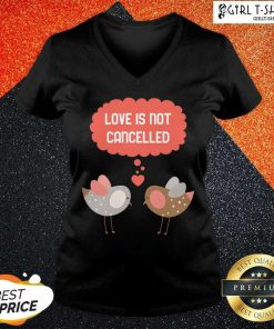 Love Is Not Cancelled Graphic V-neck - Design By Girltshirt.com